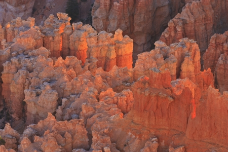 unearthly: Sunrise backlights  an unearthly formation of sandstone cliffs and hoodoos in pink light in Bryce Canyon National Park, Utah
