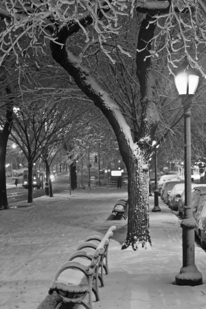 Black and white picture of the walkway and bike path during November Noreaster on Eastern Parkway in Brooklyn, NY photo