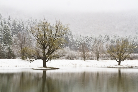 Snow-covered islands with trees on a Catskills lake near Big Indian, New York photo