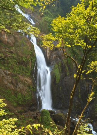 Manantial de Agua Viva waterfall - near Bigagual, Costa Rica - the tallest waterfall in Costa Rica photo