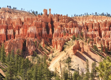 ridgeline: A ridge of hundreds of hoodoos just below the clifftops of Bryce Canyon National Park, Utah