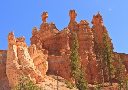 A series of hoodoos waits in the afternoon sun in Bryce Canyon National Park, Utah Stok Fotoğraf