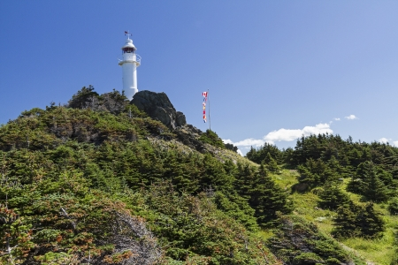 morne: Lobster Cove Head Lighthouse on a tree-covered hillside in Gros Morne National Park, Newfoundland Stock Photo