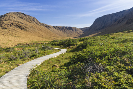 A boardwalk trail curves toward a glacially carved peridotite canyon in the Tablelands section of Gros Morne National Park, Newfoundland photo