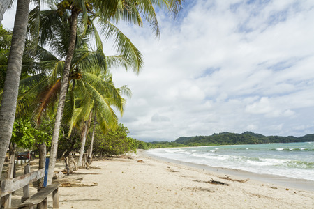 Palm trees shade the beach at quiet Playa Garza in Nosara, Costa Rica Stock Photo