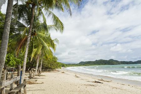 Palmen Schatten der Strand von ruhigen Playa Garza in Nosara, Costa Rica