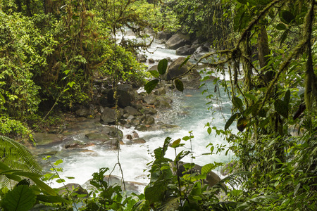 celeste: The cerulean blue waters of the Rio Celeste in Volcan Tenorio National Park, Costa Rica. Stock Photo