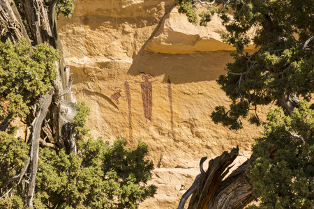 san rafael swell: Head of SInbad - a 3000 year old rock art pictograph  - an example of Barrier Canyon culture, seen through juniper trees in the San Rafael Swell in Southern Utah.