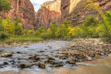 cottonwood canyon: River stones in the Virgin River with Autumn color in Zion Canyon in Zion National Park, Utah
