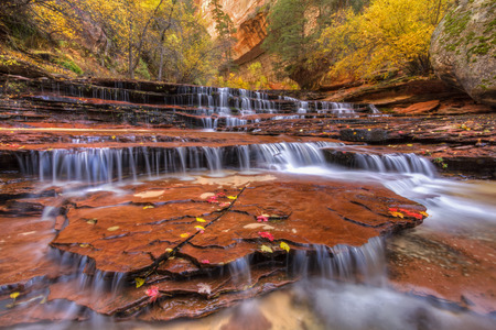 cottonwood canyon: Wide angle shot of the Red Waterfalls, also called Keyhole Falls or Subway Falls, just downstream from the Subway on the Left Fork of North Creek in Zion National Park, Utah. Stock Photo