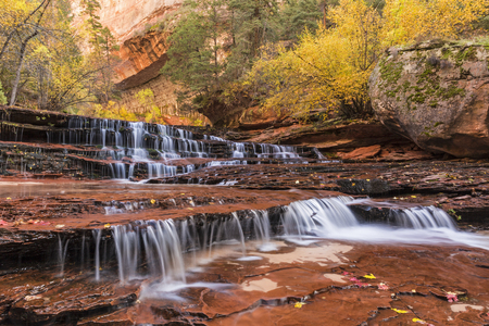 cottonwood canyon: Red Waterfalls, also called Subway Falls, just downstream from the Subway on the Left Fork of North Creek in Zion National Park, Utah.