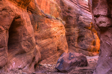 paria canyon: Warm light from around the corner in Buckskin Gulch, the longest slot canyon in the in world, in the Paria Canyon  Vermillion Cliffs WIlderness, near the Utah-Arizona border. Stock Photo