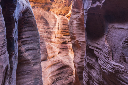 slot canyon: Colorful light filters down to WIre Pass, a narrow slot canyon that feeds into Buckskin Gulch in the Paria Canyon  Vermillion Cliffs WIlderness, near the Utah-Arizona border. Stock Photo