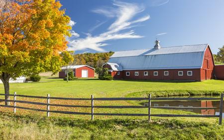 granja: Un granero rojo se refleja en un estanque con un �rbol colorido del oto�o en las monta�as Catskills en Nueva York