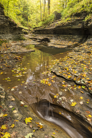 Trees reflected in pools lined with a coating of leaves in Buttermilk Gorge in Buttermilk Falls State Park, Ithaca, New York Stock Photo