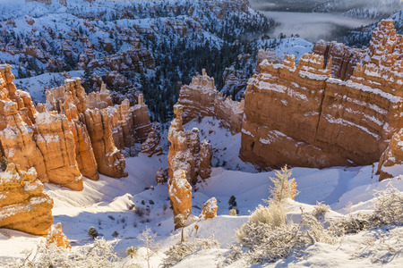 Morning sun on the snow shrouded hoodoos near Sunset Point in Bryce Canyon National Park, Utah