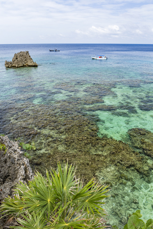 Palm trees on a cliff above the crystal clear waters of the Roatan barrier Reef in West Bay, Roatan, Honduras