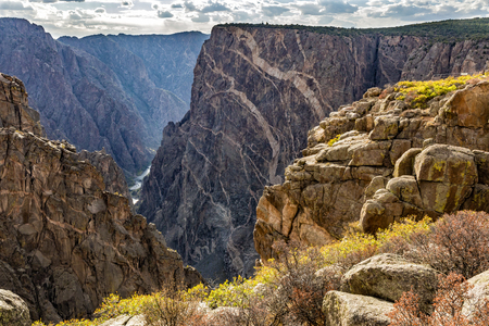 Colorful Autumn groundcover on the rim of the Black Canyon of the Gunnison National Park, Colorado. Stok Fotoğraf