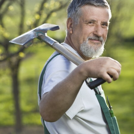 portrait of a senior man gardening in his garden Stock Photo - 9692137