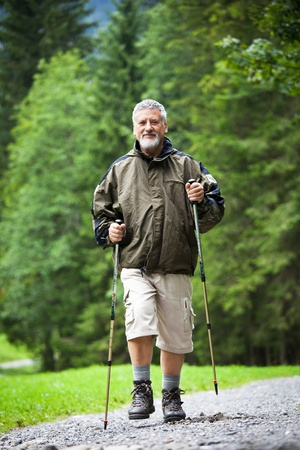 active handsome senior man nordic walking outdoors on a forest path, enjoying his retirement Stock Photo - 10544828