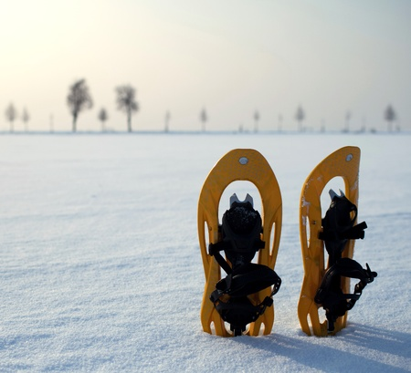 snowshoes in a snowy landscape photo