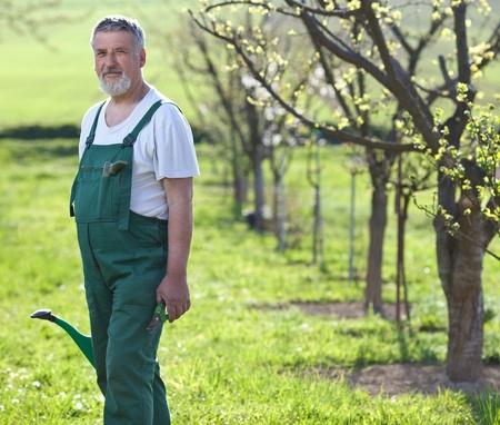 dibble: Portrait of a senior man gardening in his garden