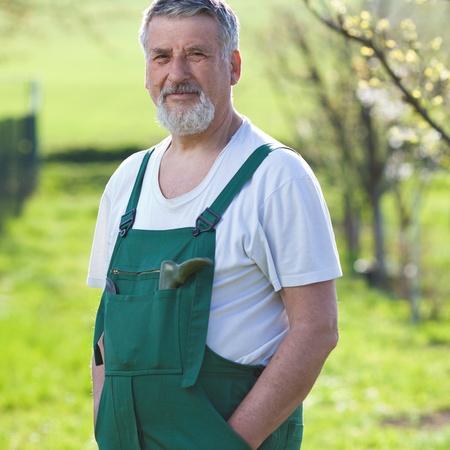 Portrait of a senior man gardening in his garden Stock Photo - 9909025