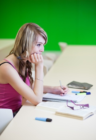 Portrait of a pretty young college student in a classroom (selective focus; color toned image) Stock Photo - 9926068