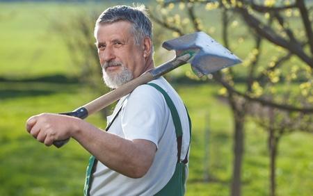 mattock: portrait of a senior man gardening in his garden  Stock Photo