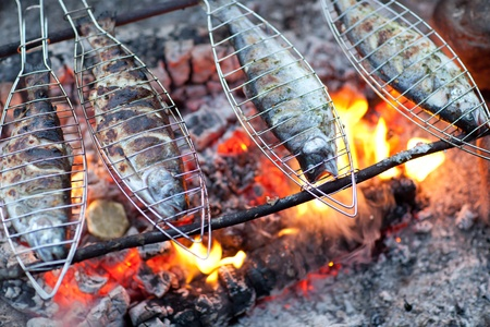 fish fire: Grilling fish on campfire