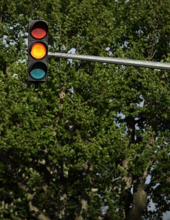 Traffic lights - orange light is on (against green tree background)  photo