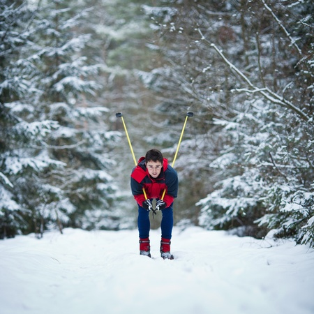 nordic country: young man cross-country skiing on a snowy forest trail (color toned image)