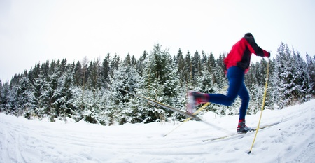 young man cross-country skiing on a snowy forest trail (color toned image) Stock Photo - 10523683