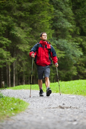 active handsome young man nordic walking/hiking in mountains, enjoying the outdoors Stock Photo - 10523685