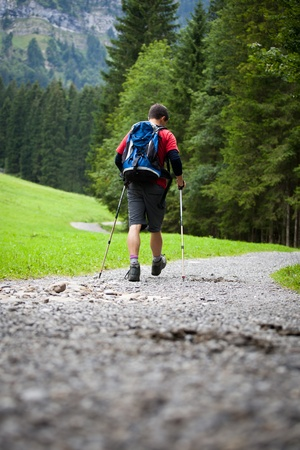 active handsome young man nordic walking/hiking in mountains, enjoying the outdoors Stock Photo - 10523689