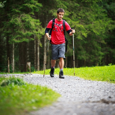 active handsome young man nordic walking/hiking in mountains, enjoying the outdoors Stock Photo - 10523661
