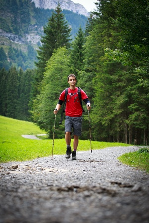 active handsome young man nordic walking/hiking in mountains, enjoying the outdoors Stock Photo - 10523725