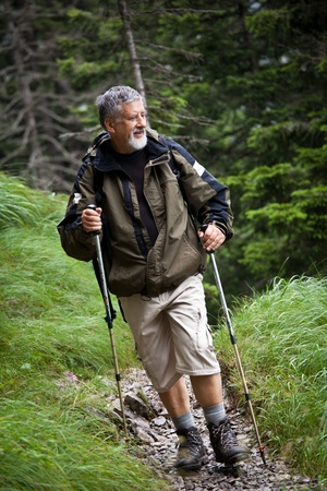 active handsome senior man nordic walking outdoors on a forest path, enjoying his retirement Stock Photo - 10575934