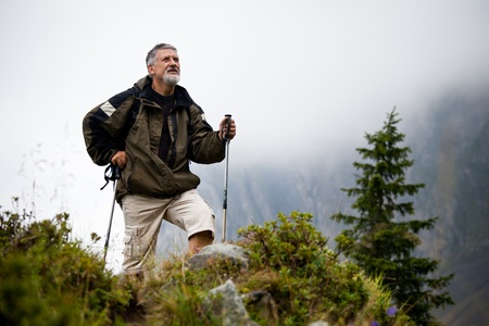 outdoor activities: active handsome senior man nordic walking outdoors on a forest path, enjoying his retirement Stock Photo