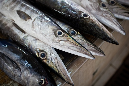 muscat: Close up of fish on display in a fish market (Muscat, Oman) Stock Photo
