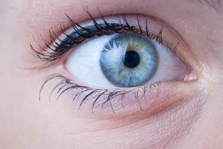 close up eye: Primo piano di una bella femmina blue eye