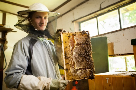 beekeeping: Beekeeper in an apiary holding a frame of honeycomb covered with swarming bees Stock Photo