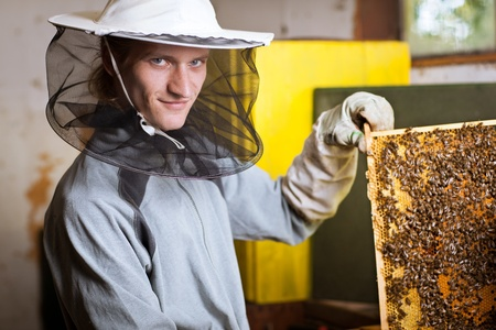 beekeeper: Beekeeper in an apiary holding a frame of honeycomb covered with swarming bees Stock Photo