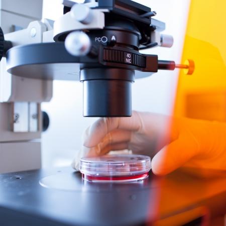 microbiologia: microscopio en un laboratorio moderno