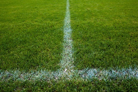 football pitch: Sport grounds concept - Footballsoccer pitch (color toned image)
