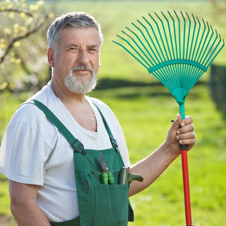 portrait of a senior man gardening in his garden (color toned image) Stock Photo - 11303537