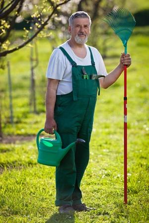 mattock: portrait of a senior man gardening in his garden (color toned image)