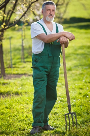 jardinero: retrato de un hombre mayor de jardinería en su jardín (imagen a color entonado) Foto de archivo