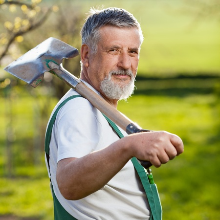 portrait of a senior man gardening in his garden (color toned image) photo