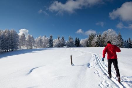 cross country: Esqu� de fondo: joven, esqu� de fondo en un d�a soleado de invierno preciosa